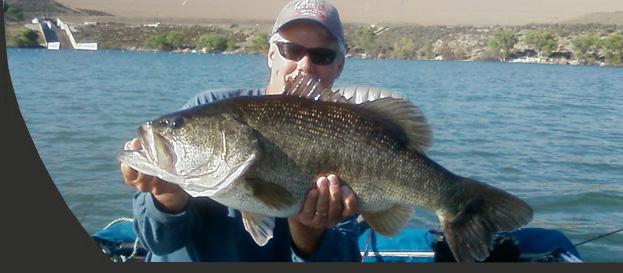 Castaic lake pyramid lake fishing guide dave horst for Castaic lake fishing
